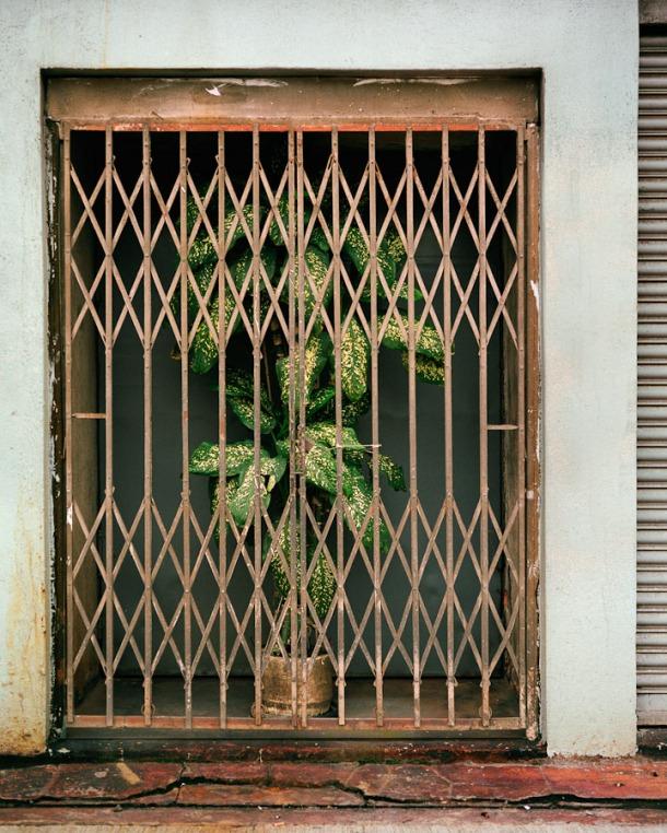 back_door_08