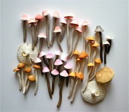 Mushroom cake decor